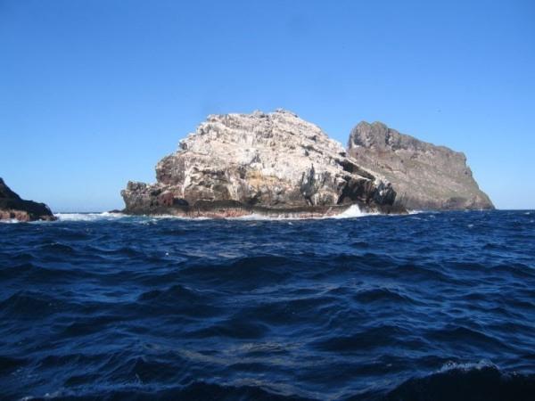 En surface, on n'a pas vraiment l'impression de se trouver sur un atoll... cette photo confirme que l'îlot le plus petit doit seulement sa couleur au guano. (photo X. Curvat, Centre de plongée des Marquises)